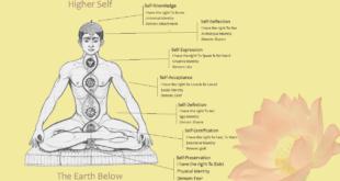Using Yoga to Balance Your Chakras